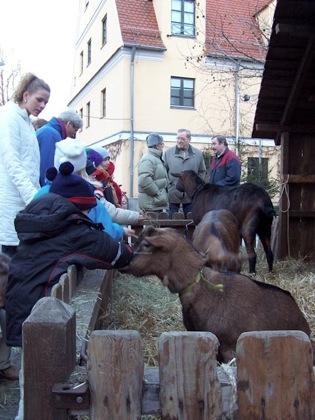 Europe 2003 December 1201web